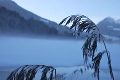 Ice in Vipiteno (24trips) Tags: nikon vipiteno d60 18135