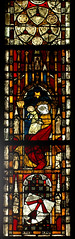 Xanten, Dom St. Victor, window, north aisle (groenling) Tags: window glass saint star coatofarms cathedral maria dom fenster mary jesus birth nrw stern nativity glas rheinland xanten geburt hagedorn wappen stiftskirche heilige nativitas victordom domstvictor hagdorn