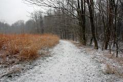 Snowy Trail (Fishit) Tags: lotuspond cincinnatinaturecenter snowtrails rowewoods abnerhollowcabin krippendorflodge cincinnatinaturecenterrowewoods powelcrosleylake