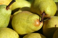 Pears (Read2me) Tags: food yellow fruit gamewinner challengeyouwinner 3waychallengewinner thechallengegame challengegamewinner friendlychallengeswinner thumbsupwinner thechallengefactory farmersmarketfruit agcgwinner anythinggoeschallengewinner superherochallengewinner storybookwinner storybookchallengegroupotr pregamewinner