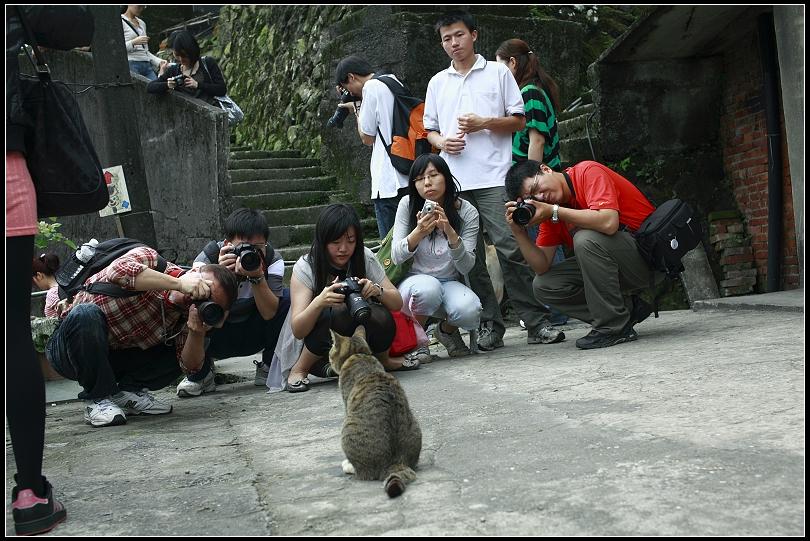 猴峒 喵喵+拍喵團