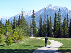 A Great day for an Easy Ride (altamons) Tags: mountain mountains bike bicycle rockies rocky canadian bicycles alberta biking rockymountains mountainview canmore mountainscape canadianrockies altamons