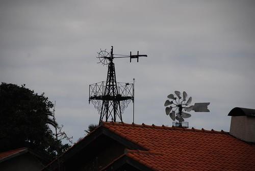 Oliveira do Douro 081
