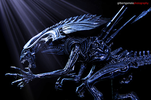 A Xenomorph Alien Queen | Flickr - Photo Sharing!