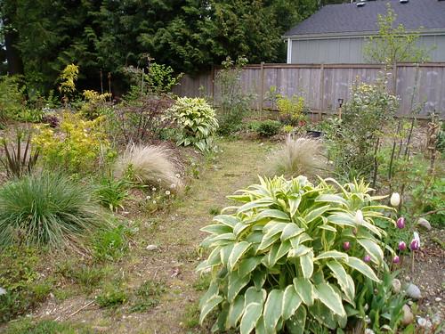 Unweeded Garden