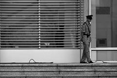 guarding lines (jobarracuda) Tags: china guard fz50 dongguan panasoniclumixdmcfz50 jobarracuda jobar yulanpark