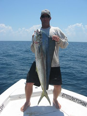 Capt. Eric M. light tackle Dolphin
