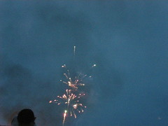 DSCN0588 (Robin Roar) Tags: fireworks 4thjuly independanceday bayvillenewyork
