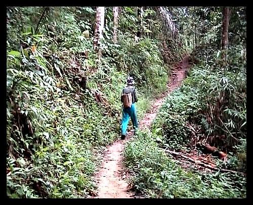 Cuevas de Niah en Sarawak