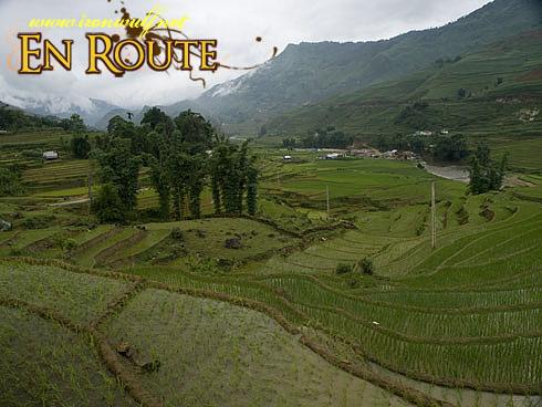 Ta Van Rice Terraces