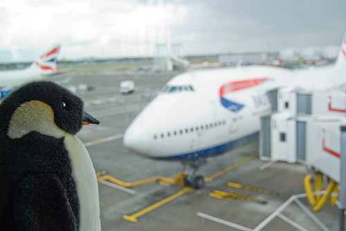 pepe at heathrow_9402