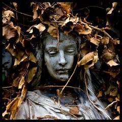autumn dreams (onkel_wart (thomas lieser)) Tags: