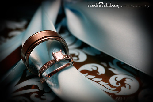 sandrasalisbury8480 copy