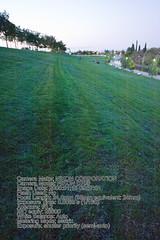 2905968580 d1b9459de6 m Análisis de la Nikon D700. Fotos y conclusiones
