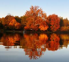 Fall at the Lake (milfodd) Tags: october omega photomerge 2008 trailer34