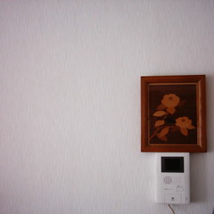 Intercom (MiniDigi)
