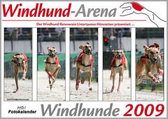 Titel-Windhund-Arena_03_2009_Noushzaad