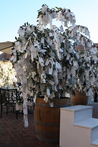 """Wish Tree for Pasadena"" by Yoko Ono at One Colorado Courtyard, 11-06-08 - 8 by you."