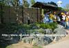 stonescape3 (rhmn) Tags: pictures stone gardening outdoor landscaping rustic pebble malaysia granite tropical limestone plans ideas gravel rockscape stonescape squidoo riverwash danialieman