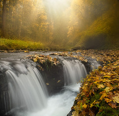Silver Falls_ Glimpse Of Light (kevin mcneal) Tags: statepark park color fall oregon creek waterfall seasons hiking silverfalls sublimity silverfallstatepark