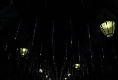 OLDP12.14.08 - Covent Garden Fa La La
