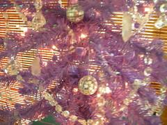 DSCN8608 (patogodfrey) Tags: twinkle 08 annualmeeting laniakea