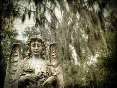 Watching Over (evanleavitt) Tags: county texture graveyard statue angel ga georgia moss south cemetary watching over atmosphere olympus spanish chatham savannah resting oaks hdr bonaventure the e510 spirtual photomatix forbill