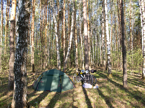 Camping in woods - Nerl