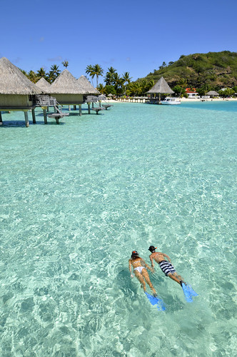 snorkeling at InterContinental Bora Bora  Le Moana Resort