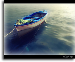 Legni stagionati - Woods seasoned (- Gigapix -) Tags: italy sun port reflections boat barca italia explore pointofview porto dreams sole riflessi musictomyeyes sogni smorgasbord aclass cilento rowingboat colorsoflife themoulinrouge agropoli imagepoetry 35faves passionphotography 25faves flickrs