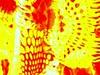 P6011288 (andrea natt) Tags: colours colored multicolors colori flickrraimbowpics