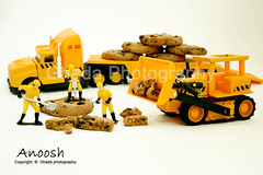 Anoosh Land   (ya7obeelk) Tags: cookies canon miniatures land 1855mm anoosh 400d ya7obeelk