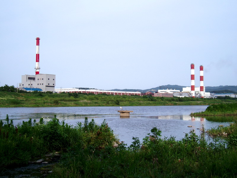 A bittern & electric power station