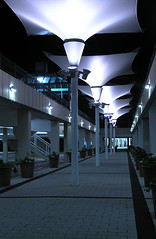 Lights in the Sky (RampantSpooning) Tags: blue light shadow england plants white night mall shopping dark concrete purple mask unitedkingdom path sheffield yorkshire bricks nin perspective shoppingcentre plastic pots direction nineinchnails flourescent balance carpark soulless tone consumerism hollow manufactured repitition meadowhall pretense comercialism