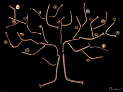 fruitful (Sharon Pazner) Tags: tree art fruit photography rust jerusalem scan nails scanned  thumbtacks scannerphotography scannerart scanography scanart scanograph scannography scanphotography sharonpazner
