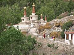 leh-hemisfest-120708-007 (Ajay Jain) Tags: india festival monastery leh himalayas ladakh hemis kunzum