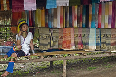Kayan Longneck Hilltribe (Discaciate) Tags: trip ladies woman neck thailand necklace asia southeastasia long burma karen longneck chiangmai myanmar tribe brass burmese bodymodification changmai peoplewatching hilltribes hilltribe longnecktribe karentribe padaung d300 birmanie ethnicminority kayan travelphotography longo neckrings karenni tibetoburman mujeresjirafa discaciate dragonneck
