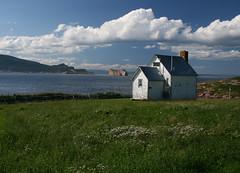 Bonaventure Island, Quebec by jasonsamson88