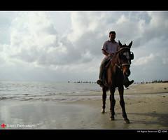 Horse Rider (  JERRY  ) Tags: joseph jerry kerala keralam princegeorge calicut horserider kozhikkode calicutbeach jerryclicks jerryphotography flickrcalicut flickrkozhikkode kozhikkodebeach princepulikkunnel