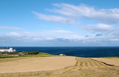 fields of gold (adudi) Tags: ocean blue ireland sea wild sky sun house nature water clouds gold freedom corn nikon shot earth farm air country machine atlantic shot2 campo fields farmer soe donegal irlanda oceano libert grano atlantico trattore biondo d40 aratura immenso dazzlingshots adudi