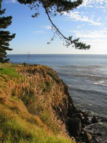 Central Coast 2007 272