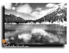 Lily Lake BW (CynDB) Tags: park travel trees blackandwhite bw usa white mountain lake black mountains west reflection art nature water monochrome clouds digital america photoshop landscape rockies photography us colorado unitedstates natural contemporary fineart creative scenic rocky scene ps national american western co prints imaging rmnp cynthia dri americanwest rockymountainnationalpark orton highaltitude burkhardt lilylake printsavailable printsforsale cynthiaburkhardt cynthiaburkhardtcom cyndb creativefineartphotographyimaging lightcommunication burkhardtphotographycom