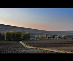 Tramonto d' autunno (*Marta) Tags: autumn trees field skyline alberi season landscape countryside exposure flickr strada tramonto tag country hill campagna valley tuscany di land transition toscana terra valdorcia autunno grazie paesaggio collina eveninglight vallata mitica solitaria stagione ultimeluci stradasolitariadicampagna transizionestagionale ipctus