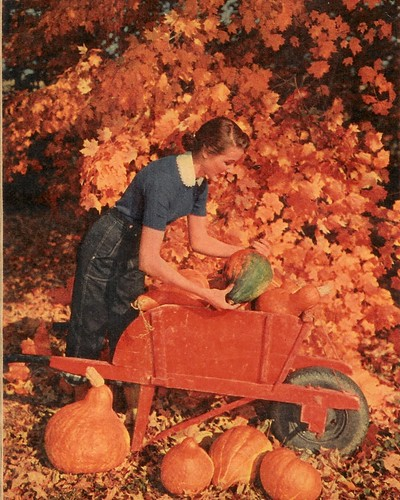 Autumn Beauty 2 - 1953 (by senses working overtime)