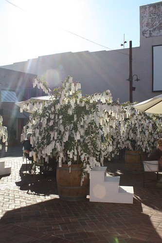 """""""Wish Tree for Pasadena"""" by Yoko Ono at One Colorado Courtyard, 11-06-08 - 7 by you."""