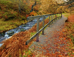 River Walk (Asim237) Tags: river manchester walk derbyshire valley atumn goyt canon40d