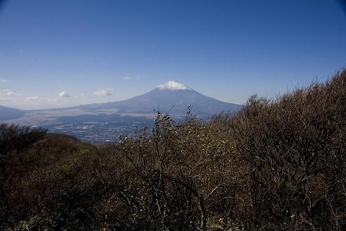 Oyama Nov 2008