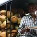 Coconut delivery man, Kochi