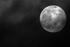 Full Moon at Perigee (kukkurovaca) Tags: moon night tripods perigee tc14b 400mmf56ais 400mmf56edais