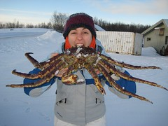 I like snow crab!